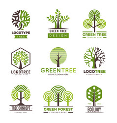 tree logotypes eco green symbols wood stylized vector image