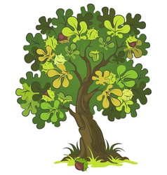 Chestnut tree vector image vector image