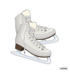 skates isolated on white background vector image vector image