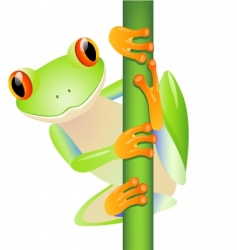 cute frog vector image vector image