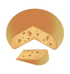 piece of cheese fresh vector image vector image