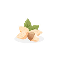 almond icon flat of almond vector image