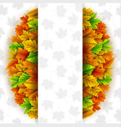 autumn leaves circle with blank banner vector image