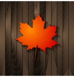 Autumn maple leaf on wooden background vector image