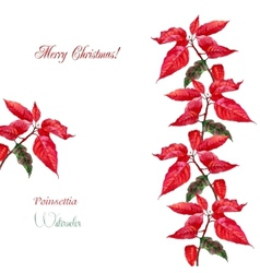 Background with red poinsettia3-06 vector image