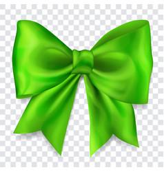 Big green bow vector