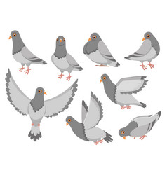 cartoon pigeon city dove bird flying pigeons and vector image