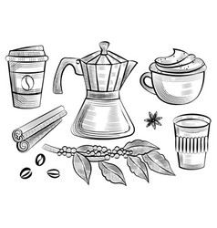 coffee cup and branch with leafs and beans moka vector image