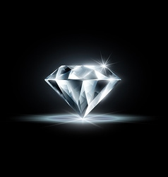 Diamond isolated on black background vector
