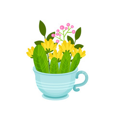 fresh spring flowers and leaves in blue cup vector image