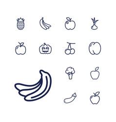 Ripe icons vector