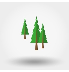 Spruce Christmas tree Forest Icon vector image