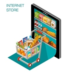 Internet store vector image vector image
