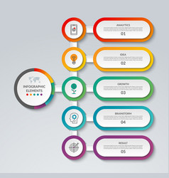 Infographic template with 5 options vector