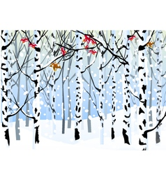 Winter Forest and Winter Landscape vector image