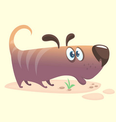 Cartoon of dachshund vector