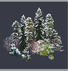 Group coniferous trees bushes and rocks vector