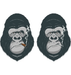 Monkey with a cigarette vector