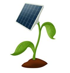 Plant solar battery vector