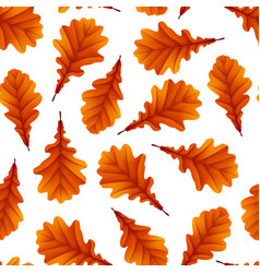 red oak leaves isolated on white background vector image