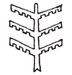 Tree design stem serves as a pillar or beam vector