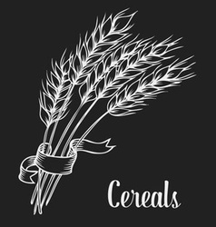 Wheat for Cereal vector image