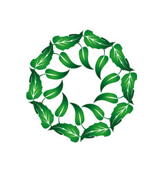Wreath of green leaves 1 vector