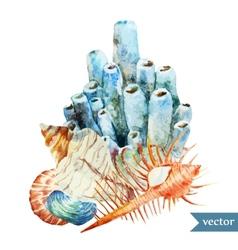 Watercolor sea coral shell2 vector