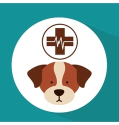 veterinary dog care clinic icon vector image