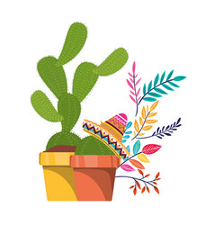 Cactus with pot and mexican hat icon vector