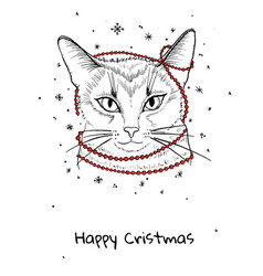 Christmas cat cute kitten vector