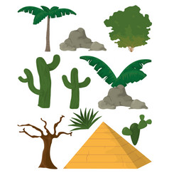Desert plants and and elements vector
