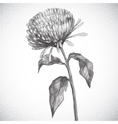 Flower Black and white Dotwork vector