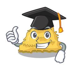 Graduation hay bale character cartoon vector