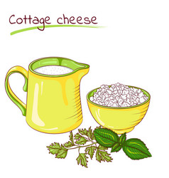 Milk and cottage cheese vector