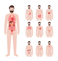 Pain in male body vector