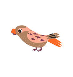 parrot bird with colored feathers and wings vector image
