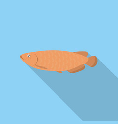 Scleropages fotmosus fish icon flat singe vector