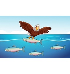 Wild eagle catching fish in the sea vector