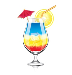 object cocktail vector image