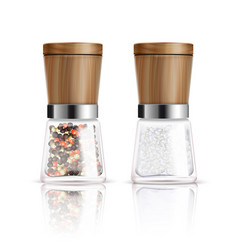 salt and pepper mill composition vector image vector image