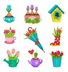 flat set of floral compositions beautiful vector image