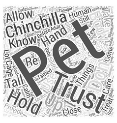 How To Get Your Chinchilla To Trust You Word Cloud vector