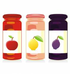 jam jars set vector image