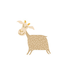 young goat hand drawn vector image