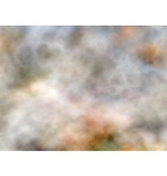 Marbled smoke vector image vector image