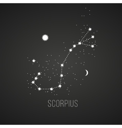 Astrology sign Scorpius on chalkboard background vector image