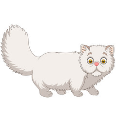 Cartoon persian cat on white background vector