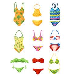 flat set of female swimsuits trendy women vector image