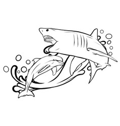 great white shark ripping with opened mouth vector image